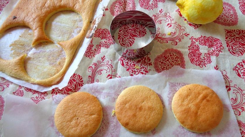 Dischi di base bisquit