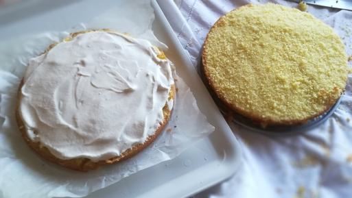 Preparazione torta paradiso